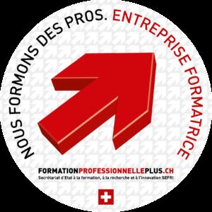"""Logo """"Nous formons des Pros"""""""